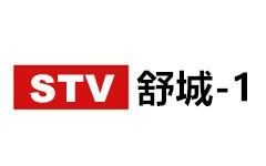 舒城新闻综合频道