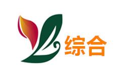 鄢陵综合频道