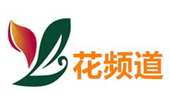 鄢陵花频道